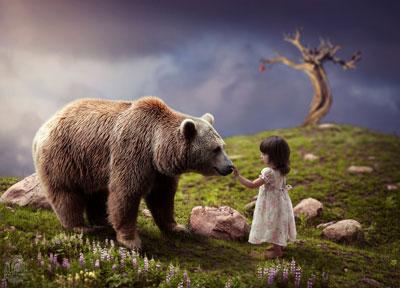 Стихи про медведя для детей 4-5 лет