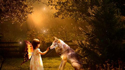 Загадка про волка для детей 6-7 лет