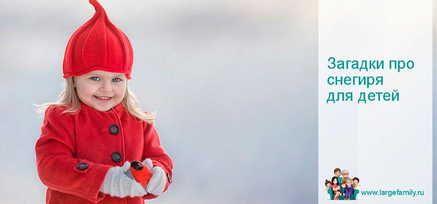 Загадки про снегиря для детей