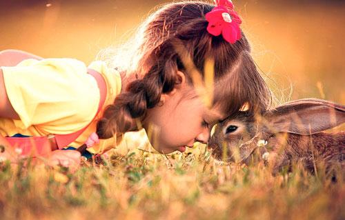 Загадки про зайца с ответами