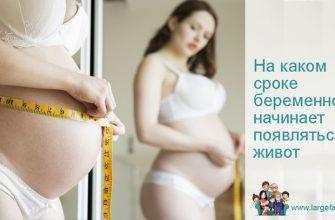 На каком сроке беременности появляться живот
