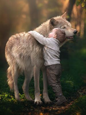 короткие стихи про волка для детей 5-6 лет