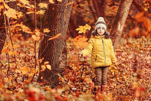 Красивые стихи про осень русских поэтов для детей 6-7 лет