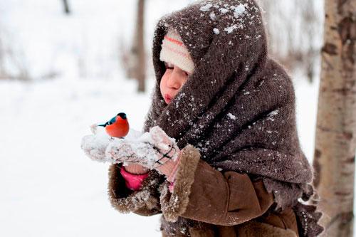 Загадки про снегиря для детей 5-7 лет