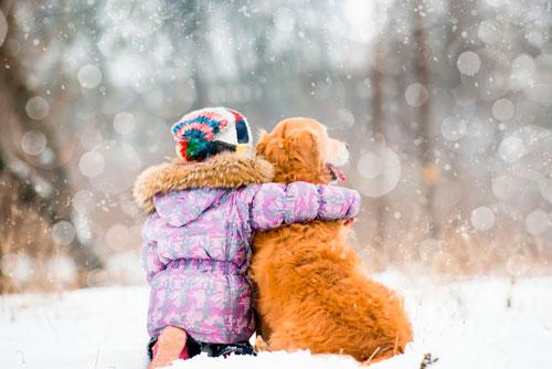Красивые стихи про первый снег для детей
