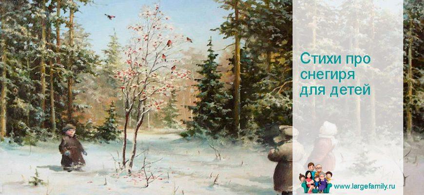 Стихи про снегирей для детей