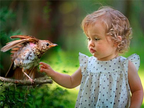 Загадки про птиц с ответами для детей