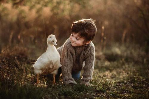 Загадки про птиц для детей 5-7 лет