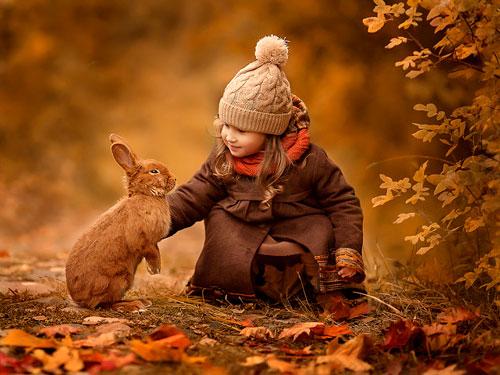 Красивые стихи об осени для детей