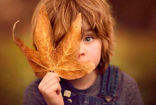 Красивые стихи об осени