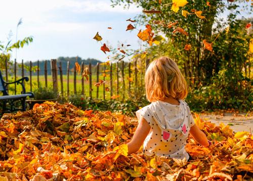 Красивые стихи об осени для детей начальной школы
