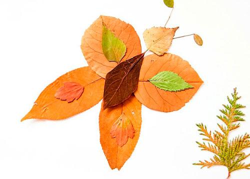 Картины из осенних листьев для детского сада: бабочка
