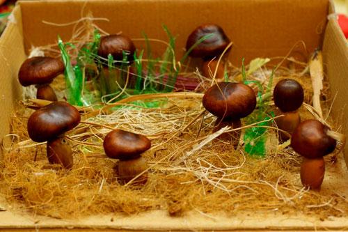 Идеи поделок своими руками на тему осень из каштанов: грибы