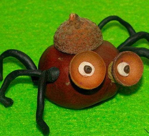 Идеи поделок своими руками на тему осень из каштанов: паук