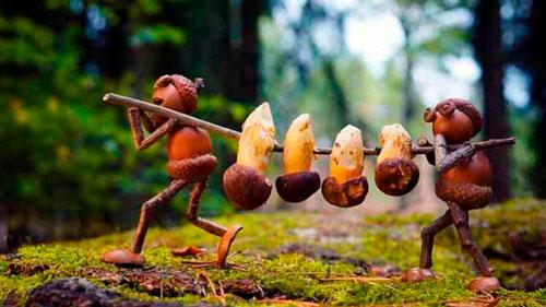 Идеи поделок своими руками на тему осень из желудей: грибы
